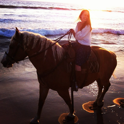 Horseback Sunset Beach Ride